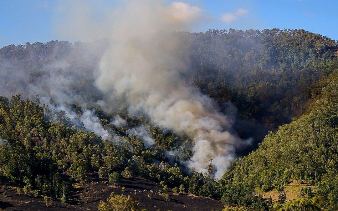 A Big Factor in Australian Fires