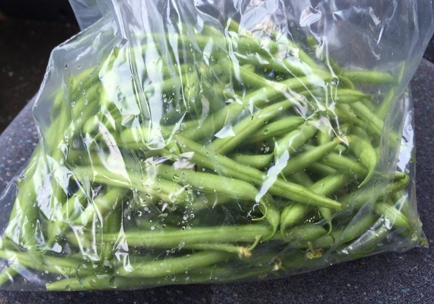 Plastic bag with green beans