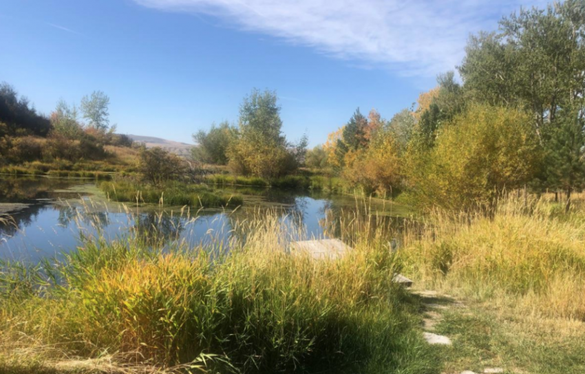 A pond on John and Roman Baden's ranch