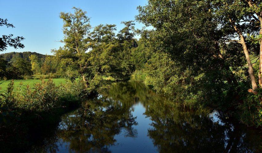 River wetland