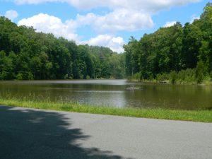 Lake near Chapel Hill